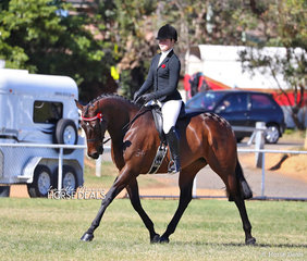"Winner of the Open Hack 15.2-16hh class ""La Bella"" ridden by Sarah Olsen."