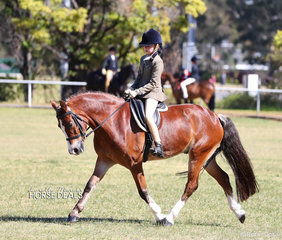 "Sienna Zwar and ""Kenda Park Paladin"" won the Open Show Hunter Pony 12.2-14hh class."