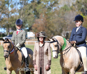 "ChampionLarge Show Hunter Pony "" Swanreach Gold Lyric"" owned by Kiri Jenkins and ridden by Trinette Crawford. Judge Mardi Mangan and Reserve Champion Large Show Hunter Pony ""Monteith Brunson"" ridden by Chloe Strath."