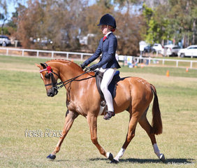 "Taylah Huchinson and ""Langtree Fair Play placed 2nd in the Open Pony 13-13.2hh class."