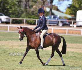 "Georgia Rodgers and ""Bamborough Rosna""  were class winners in the Small Pony ring."