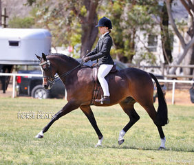 "Cienna Knowles and her Champion Small Hack ""Nevertire Just Dane""."