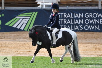 Tess Rana rode her charming, 'Otway View Eragon' to win the class for Open Pony N/E 11hh.