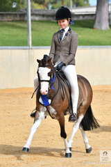 Andrea Merry's always eye catching, 'Splashdance' ridden by daughter, Dallas Merry won the class for Open Show Hunter Pony 11.2-12hh.