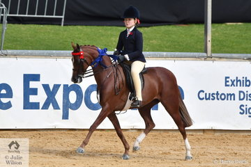 A very busy Ella Manning rode Catherine Gale's beautiful and very well performed pony, 'Newington Tinkerbell' to win the class for Open Pony 11.2-12hh.