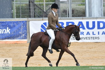 Brodie Kittel's, 'Braeside Royal Occasion' won the class for Novice Show Hunter Pony 12.2-13hh.
