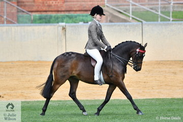 Daizi Plumb rode Dale Plumb's, well performed, 'DP Lady Di' to take fourth place in the strong class for Open Pony 12-12.2hh.