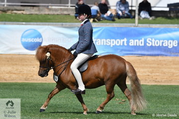 Ella O'Doherty, who went on to win her 12-14 Years riding class (riding something a bit bigger) rode Rebecca Gerber's, 'Chesapeake Park Paparazzi' to win the class for Novice Ridden Shetland N/E