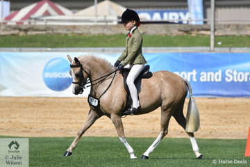 Kate Halliday's, Emblem Enchantment' won the class for Show Hunter Pony Mare N/E 12.2hh.