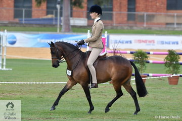 Edwina Harrison's, 'Harewood Royal Soldier' took second place in the class for Open Show Hunter Pony 12.2-13hh.