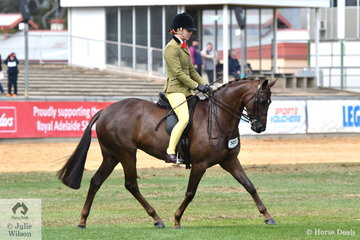 Charlie Hunt rode the Argyl Stud's, Best Novice Show Hunter Pony, 'Argyl Diamonds' to win the class for Open Show Hunter Pony 13.2-14hh.