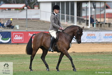 Michelle Mclean's, 'Joemoor Splendas' took second place in the class for Open Show Hunter Pony 13.2-14hh.