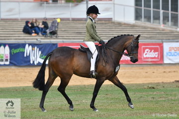 Tia McKenzie's Australian Pony, 'Koorana Neverland' took third place in the strong class for Open Show Hunter Pony 13.2-14hh.