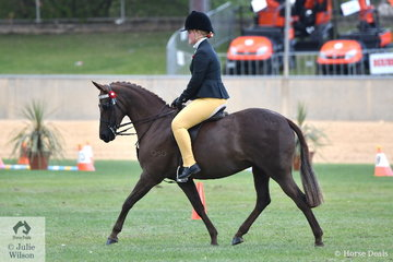 B Harrison and D Murphy's, 'Wynara Eclipse' is pictured during the strong class for Open Pony 13.2-14hh.
