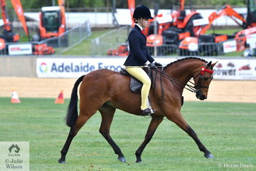 Susan Castley's, 'Argyl iTunes' took sixth place in the class for Open Pony 13.2-14hh.