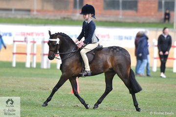 Amelia Baines  rode S and A Bowen's, 'Barindale Silhouette' to win the class for Pony Hack Mare N/E 12.2hh.