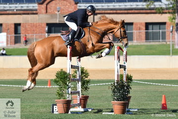 David Boulton from Gippsland in Victoria  jumped a good clear round this morning riding his , 'Silverlyn Archie' in the Part 3 One Round competition.