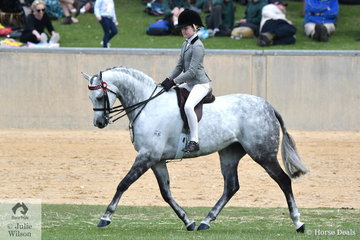 Poppi Plumb has had a wonderful show with Dale Plumb's, 'Mirinda Alabaster' and today claimed the Child's Show Pony Championship with the beautiful grey pony.