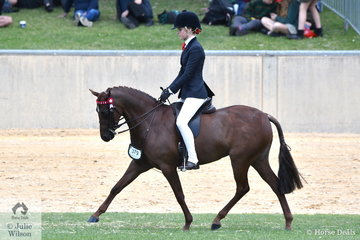 Ebonie Lee is pictured aboard Cassandra Fasan's, 'Kyandra Picturesque' that won the class for Child's Pony12.2-13hh.