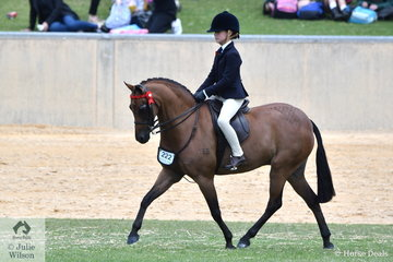 Annabelle Richardson was in the thick of it again today and rode Emma Richardson and Maddi Ginn's, 'Harrington Park Symphony' to claim the Child's Pony Reserve Championship.