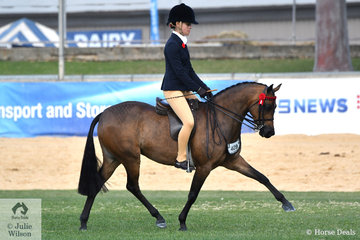 Tahlia Young rode Greg Gerry and Darren Telford's, 'Whitmere Ethereal' to win the  class for Open Pony 12.2-13hh and claim the Large Pony Reserve Championship.