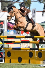 Briony Temby rode her, 'El Diablo' to second place in the hotly contested Part 3 jump off class this morning. Twenty three of the 44 to start posted a clear first round.