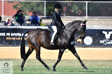 Brodie Kittel rode his, 'Willowcroft Regal Delight' to take second place in the class for Novice Galloway 14.2-15hh.