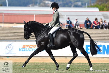 The ponies are over, so on with the horses. Ebonie Lee rode her good working, 'Zena PPH' to win the class for Novice Show Hunter 15-15.2hh.