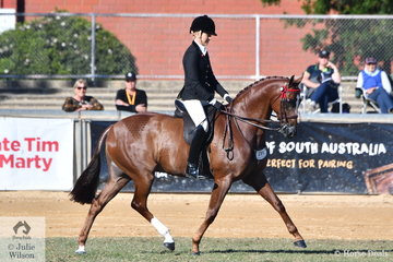 Ali Berwick rode her own and E Barkla's nomination, 'Royal Oak Foreign Affair' to win the class for Novice Hack 15-15.2hh.