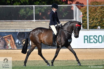 Harry Beckel rode his own and Millicent Quigley-Smith's nomination, 'Leanda Chances Are' to second place in the class for Novice Hack 15-15.2hh.