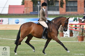 Kate Halliday rode the Emery and Halliday nomination, 'Ridgeview Park French Lace to take second place in the class for Lightweight Show Hunter Galloway.
