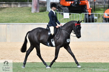 Ty Zoontjens rode Bonnie McKerlie's, 'Broughton Vale Midnight Blues' to third place in the class for Novice Hack 16-16.2hh.