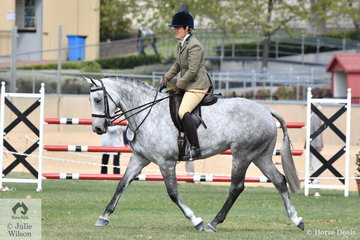Sarah Lamb is pictured aboard her delightful, 'My Little Molly' that took sixth place in the class for Open Show Hunter 15.2-16hh.