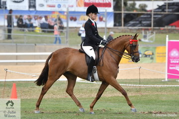 Margot Haynes rode Elise Williams', 'Lily's Parade' to take fourth place in the class for Open Galloway 14-14.2hh.