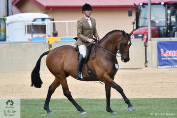 Clint Bilson rode John de Marco's, 'JD Montreal' to take third place in the Millionaire Memorial Show Hunter class.