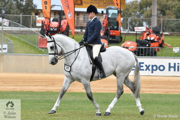Riley Shannon-Winzer rode Jan Clarke's eye catching Thoroughbred, 'Parishon ' to win the class for Novice Show Hunter 16-16.2hh.