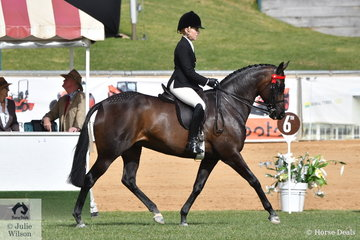 Margot Haynes rode the Haynes, Quayle and Murray nomination, 'Royal Highness' to win the class for Lady's Hack.