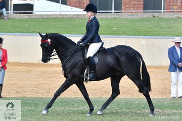 Phoebe Kuros rode India Mitchell's nomination, 'Royalwood Centre Stage' to take sixth place in the class for Open Hack 15-15.2hh.
