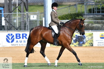 Jaimee-Lea Bruggemann rode her, 'Ballymont Laffranchi' to win the class for Open Show Hunter 15-15.2hh.