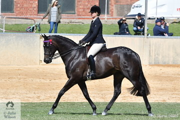 Heidi Pickstock rode Dale Plumb and R McDonald's nomination, 'DP Gisele' to win the strong class for Open Hack 15.2-16hh.