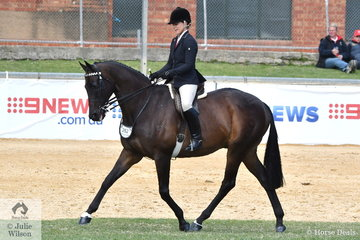 Michelle Paynter rode her super successful, 'DP Amazing' to take third place in the class for Open Hack 16-16.2hh.