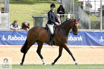 Greg Mickan rode Terry van Heythuysen and Edwina Cullen's outstanding 'Lordz' to win the class for Open Hack Over 16.2hh.
