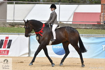 Daizi Plumb stepped aboard her father's, 'DP Kingdom' and took second place in the class for Open Show Hunter 16-16.2hh.
