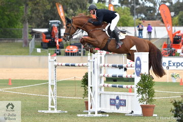 Brook Dobbin from the Yarra Valley in Victoria rode Wendy Keddell's impressive, Carrado MVNZ to post a clear first round and four faults in the second round placed them fifth overall in the Princess Royal Station World Cup Qualifying Round.