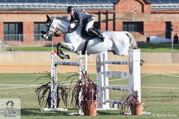 Local rider Matt Afford rode Kaluna Salute to post a clear first round in the Princess Royal Station World Cup Qualifying Round. Last to go in the jump off, Matt tried to jump faster than Clint but four faults dropped them into second place.