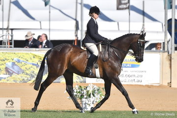 Michelle Paynter rode her super successful, 'DP Amazing' to take second place in the strong class for Owner/Rider Hack and won the Lightweight Hack.