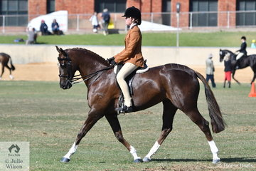 Taleisha Snell rode Shelley Penny's, 'Sheldene Delago' to take second place in the class for Child's Show Hunter.