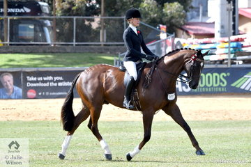 Jess Stones rode C Collins and A Skyring's former Adelaide Royal Champion Hack, 'DP Polo' to take sixth place in the class for Lightweight Hack today.