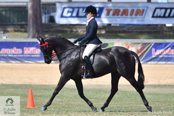 Chanele Hunter-Cooke rode Lyn Warburton's, 'Daisy Patch Soul Star' to win the class for Open Galloway 14-14.2hh and today claimed the 2018 Adelaide Royal Show Reserve Champion Galloway award.
