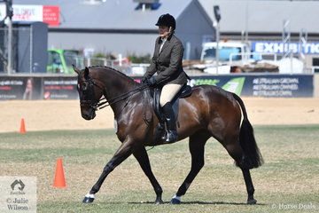Jackie Anderson's, 'Poitier' is pictured during the class for Heavyweight Show Hunter.